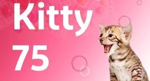 Kitty 75